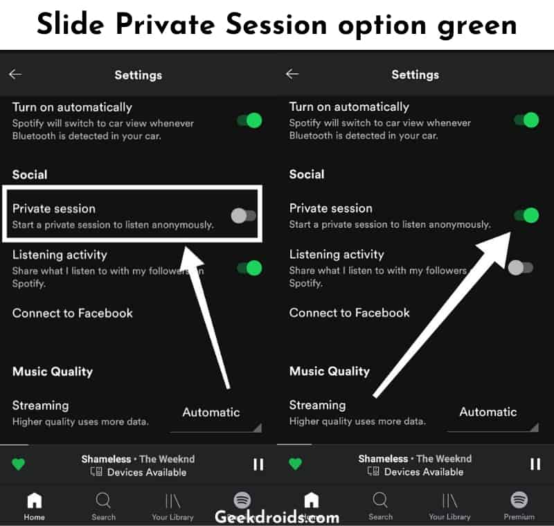 private_session_spotify_4